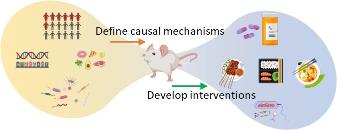 Causation and Mechanism